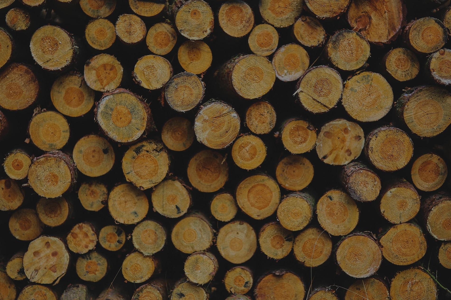 hout-rumling-bouw